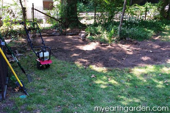 Back Garden During 2