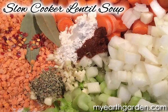 Slow Cooker Lentil Soup Ingredients