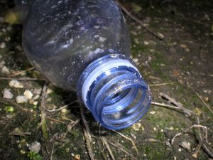 Bottle in a Landfill