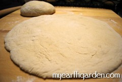 dough3