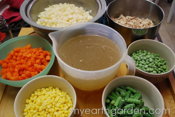 My Earth Garden: Chicken Soup Ingredients