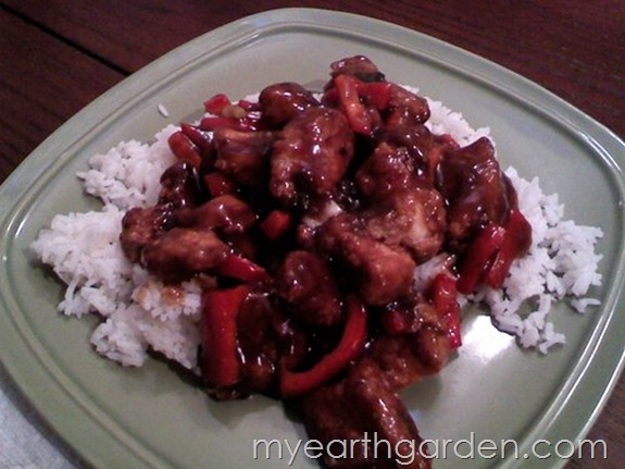 My Earth Garden: General Tso's Chicken