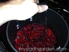 My Earth Garden Cranberry Sauce