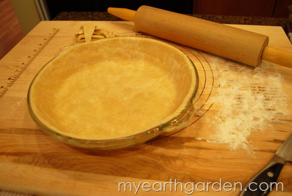 My Earth Garden Pie Crust