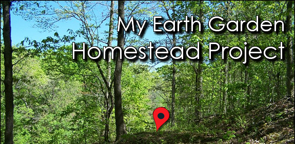 My Earth Garden Homestead Project